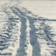 Stock Photo: Cross-country ski trail in a snowy field (lit by warm, late afte