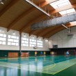 Interior of a modern multifunctional gymnasium with young - Stock Photo