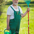 Portrait of a senior man gardening in his garden (color toned im - Stock Photo