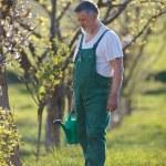 Portrait of a senior man gardening in his garden — Stock Photo #7419647