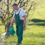 Portrait of a senior man gardening in his garden — Stock Photo #7419655