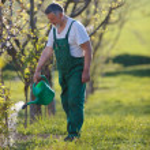 Portrait of a senior man gardening in his garden — Stock Photo #7419679