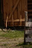 Farming tools by a barn. — Stock Photo