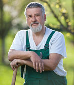 Portrait of a gardener in a garden — Stock Photo