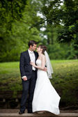 Lovely young wedding couple - freshly wed groom and bride posing — Stock Photo