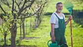Portrait of a senior man gardening in his garden (color toned im — Stock Photo