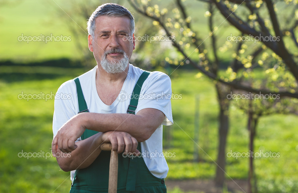 Portrait of a senior man gardening in his garden — Stock Photo #7416026