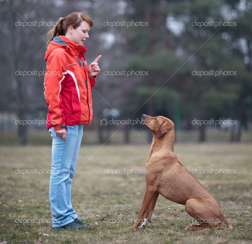 Master and her obedient (rhodesian ridgeback) dog — Stock Photo #7416616