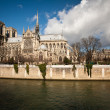 The Notre dame de Paris church side view - Stockfoto