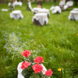 Lovely wedding ceremony venue - blossoming orchard on a beautifu - Stock Photo
