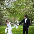 Stock Photo: Young wedding couple - freshly wed groom and bride posing outdoo
