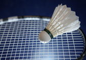 Badminton racket and shuttlecock on its strings — Stock Photo