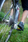 Biking - rear wheel of a young woman's mountain bike on a green — Stock Photo