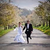 Young wedding couple - freshly wed groom and bride posing outdoo — Stock Photo