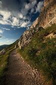 Mountain hiking trail — Stock Photo