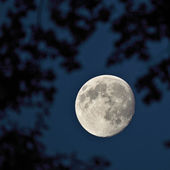 Full moon on the dark night sky — Foto Stock