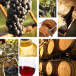 Stock Photo: Collage of wine