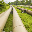 Industrial pipelines on the ground — Stock Photo