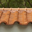 Chinese temple roof — Stock Photo #7922278