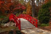 Iris Bridge in the Fall — Stock Photo