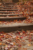 Stairway covered with fallen leaves — Stock Photo