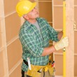 Handyman mature professional with spirit level - Stock Photo