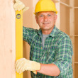 Handyman mature professional with spirit level — Stock Photo #6879354