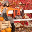Autumn park bench young woman with pumpkins - Stock Photo