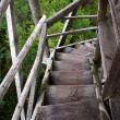 Wheathered wood stairs leading till the ground — Foto de Stock