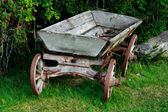 Old and used wagon standing near bushes — Stock Photo