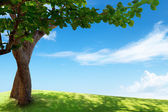 Green field and tree — Stock Photo