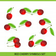 Glass cherry symbols big set on the white — Stock Vector