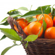 Tangerines in a basket — Stock Photo