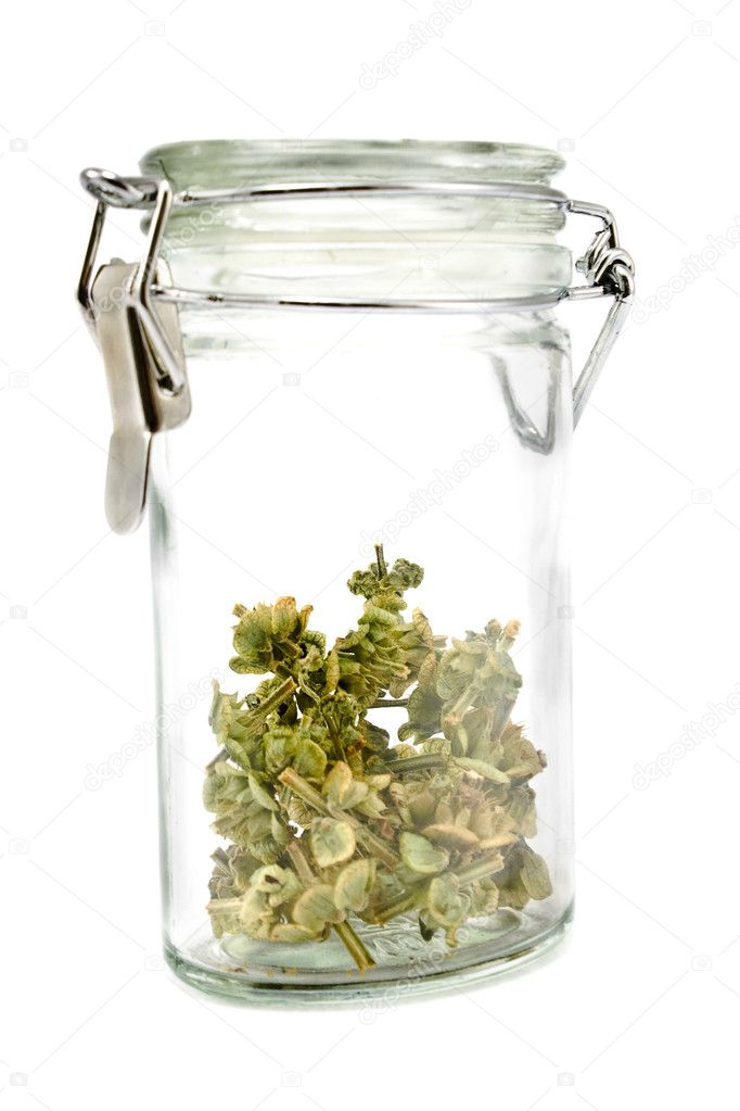 Jar with dried basil isolated on white  Stock Photo #7293376