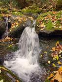 Falls on the mountain river — Stock Photo