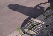 Sombra gracioso — Foto de Stock