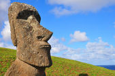 Solitary Moai on Easter Island — Stock Photo