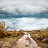Flooded road in prairie and dramatic sky — Stock Photo