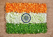 Indian flag from chopped vegetables — Stock Photo