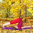 Yoga halasana in autumn — Stock Photo