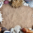 Stock Photo: Seashells frame on beach