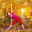 Royalty-Free Stock Photo: Christmas Yoga trikonasana pose