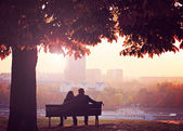 Romantic Couple — Foto Stock