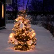 Christmas tree at night - Stock Photo