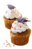 Fall cupcakes — Stock Photo
