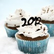 Royalty-Free Stock Photo: 2012 cupcakes