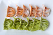 Raw vegetable dumplings — Stock fotografie