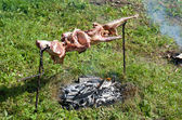 Lamb barbecue — Stock fotografie