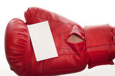 Business blank in boxing gloves — Stock Photo