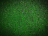Green paint leather — Stock Photo